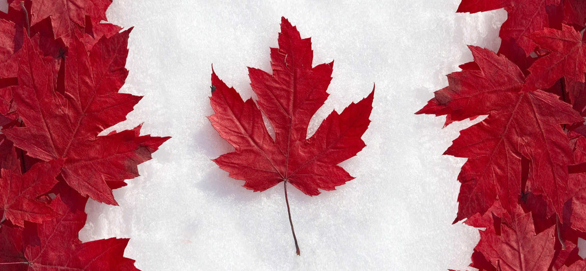 Canadian Flag 1920wide