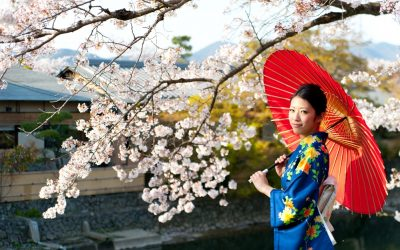 Why you need to go to Japan on your next holiday