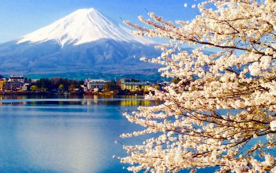 Why you should follow the 2020 Olympics to Japan