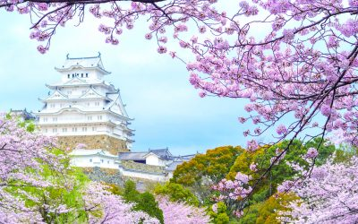 Best of Japan 2022 Cruise
