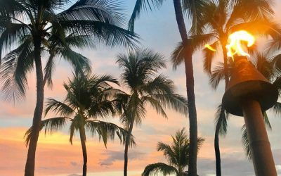 Why you should choose Honolulu for your next overseas trip